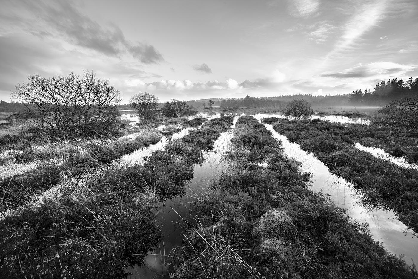 Linjer af vand i Nationalpark Thy